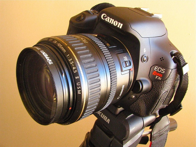 """My new Canon 600D """"Rebel"""" T3i. Bought this in September. It takes great pictures and has more features than I really need - nice to have and a major upgrade from my old Canon 300D.     http://www.dpreview.com/reviews/canoneos600d/"""