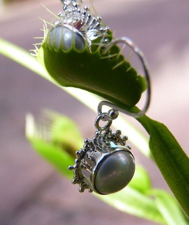 925 Silver Fresh Water Pearl Earrings