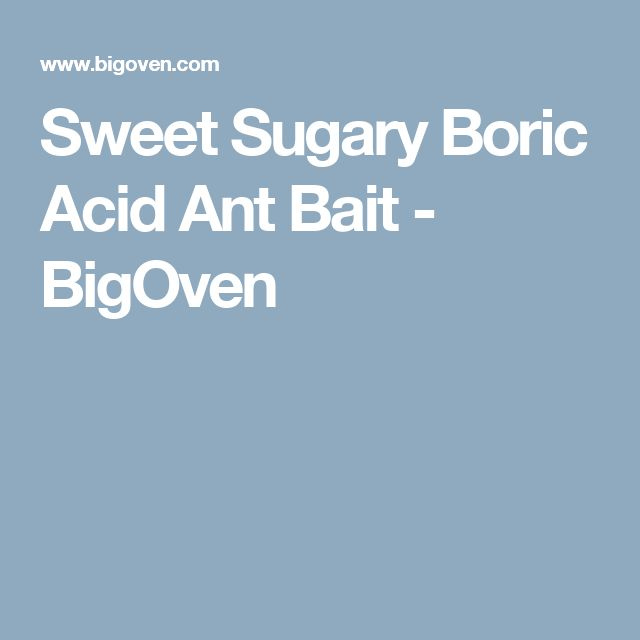 Sweet Sugary Boric Acid Ant Bait - BigOven