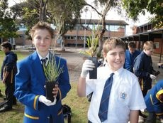 Schools Tree Day - National Tree Day