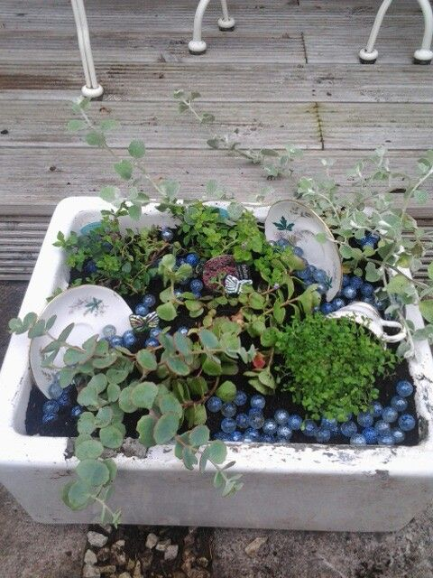 Belfast sink with plants and vintage crockery ♡