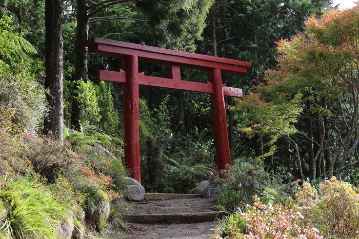 Mishima Tori Gate