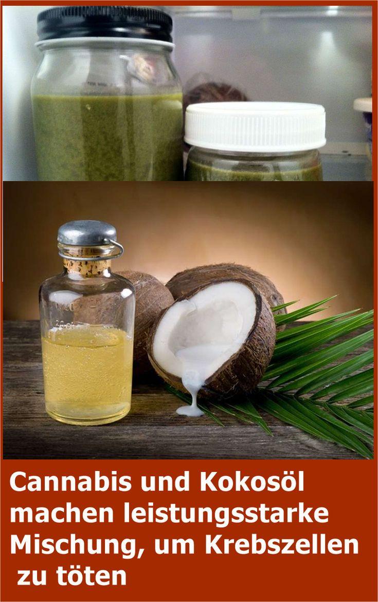 Cannabis und Kokosöl machen leistungsstarke Mischung, um Krebszellen zu töten …