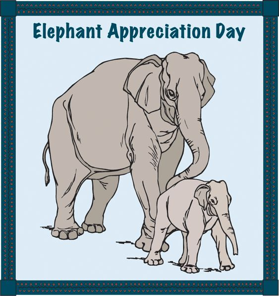 September 22 is Elephant Appreciation Day. Check out these movies that offer various elephants for appreciation.