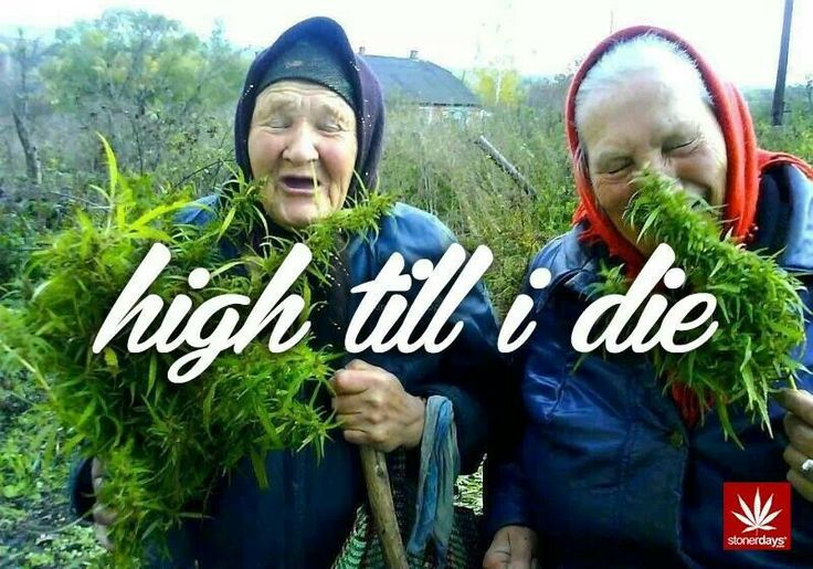 Grandma's secret shit.... #cannabis #marijuana