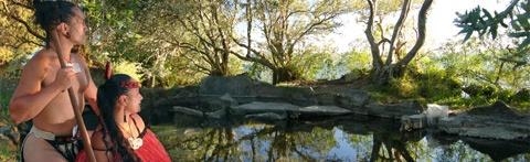 Hinemoa's Pool