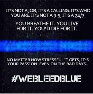 I bleed blue. I have seen behind the rusted gold badge and I will defend it. I don't care who won't join me. Or if anyone will at all. I will. It's not because I don't have the courage to fight against the police, but because I am brave enough not to. I will always bleed blue.