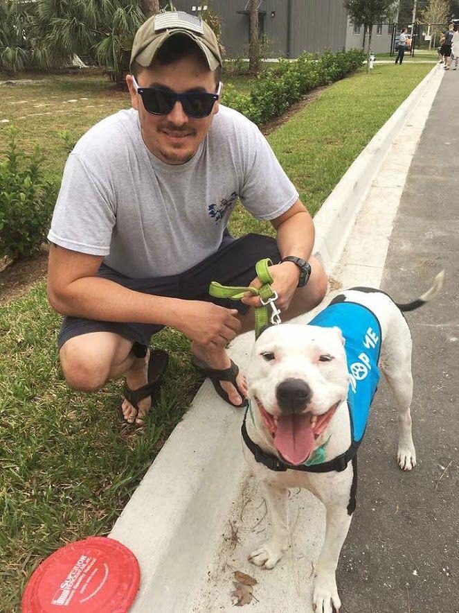Can U Train A Dog For Panic Attacks