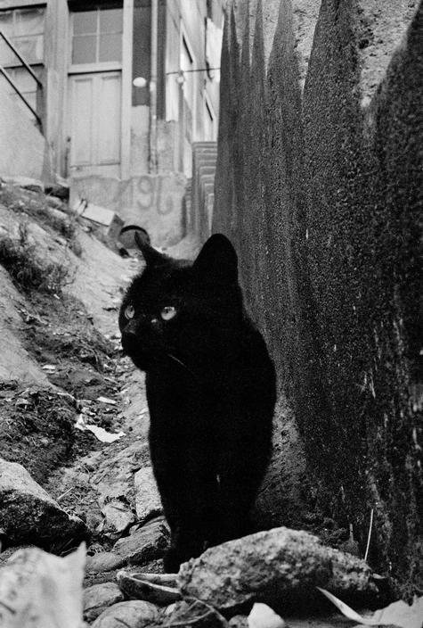 Valparaiso, Chile 1963. Sergio Larrain