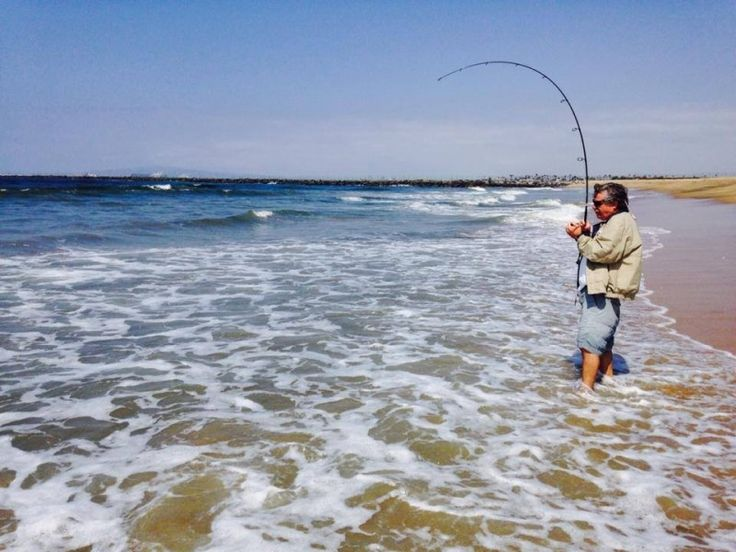 54 best images about surf fishing on pinterest the surf for Best fishing in california
