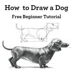 This dog drawing tutorial rocks!!