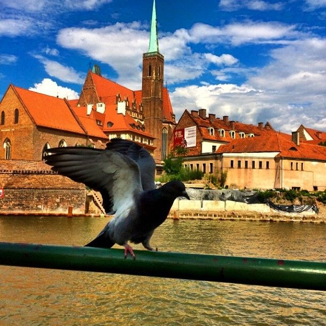 10. Ostrów Tumski || Most Zakochanych