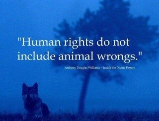 """""""Human rights do not include animal wrongs."""""""