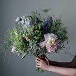 "1,032 Likes, 2 Comments - 달빛꽃집- 화정꽃집.일산꽃집 , Florist 봄 (@dalbit_flowershop) on Instagram: ""D r y F l o w e r ✨✨✨ . . . . . . (07:30-22:00) . (🌿주문카톡 - 달빛꽃집)…"""