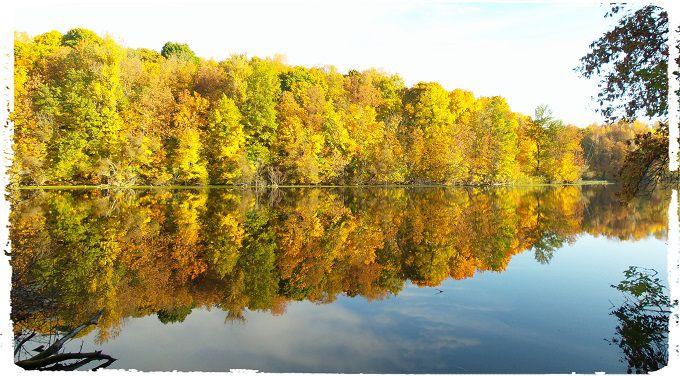 Autumn Poetry. #poetry #freeimages #freepictures #freephotos #haiku #autumn #fall #pond #reflexion