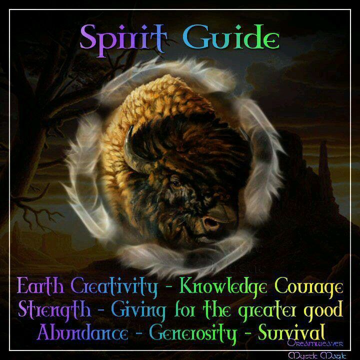 Spirit Guide ...: Indian Art, Native Quotes, American Indian, Spirit Guide, Native Pride, Animal Totems, Animal Guide, Native Spirit, Native American