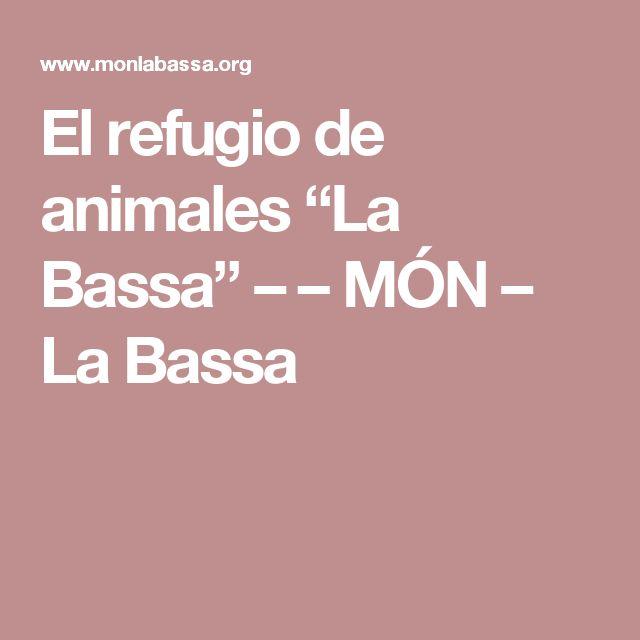 """El refugio de animales """"La Bassa"""" – – MÓN – La Bassa"""