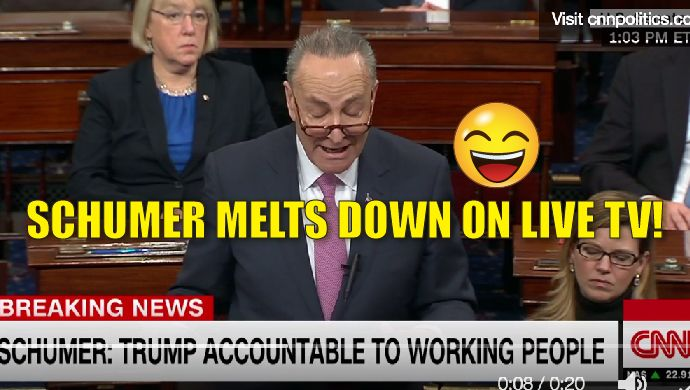 """Senator Chuck Schumer went on an oddball rant, chastising Trump for failures that have not even happened. Holding him """"accountable"""" for stuff he has not even done. If this is any indication of what is to come, then we're in for one hell of a circus! watch the video: Sen. Chuck Schumer: """"America cannot afford a Twitter presidency"""" https://t.co/6OZtrfIwim https://t.co/We8yRMNkFh — CNN Politics (@CNNPolitics) January 3, 2017 Amy Moreno is a Published Author , Pug ..."""