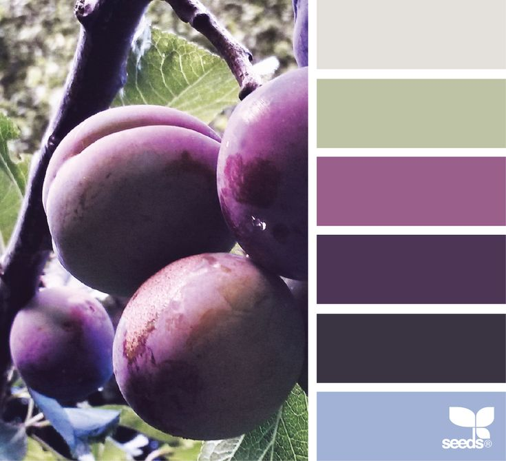 { color pick } image via: @_ewabakrac