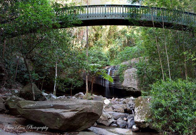 buderimfalls-bridge