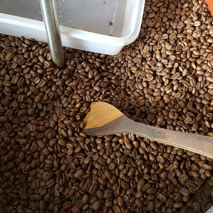 Proses roasting kopi luwak