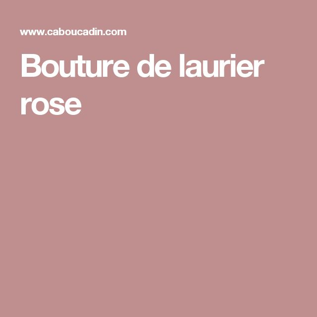 les 25 meilleures id es concernant laurier rose sur pinterest entretien laurier rose. Black Bedroom Furniture Sets. Home Design Ideas