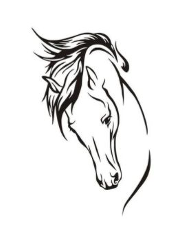 Only $12.64! Shop24seven365 for this large size horse head wall sticker. Sticker is easily removable from surfaces. Great for horse lovers. Available in different colours and sizes. Visit www.shop24seven365.com.au to choose your options and purchase.
