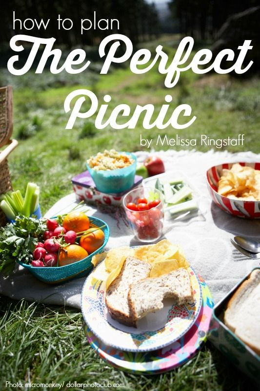 How to Plan the Perfect Picnic: Just in time for summer @ebay #deals #ad