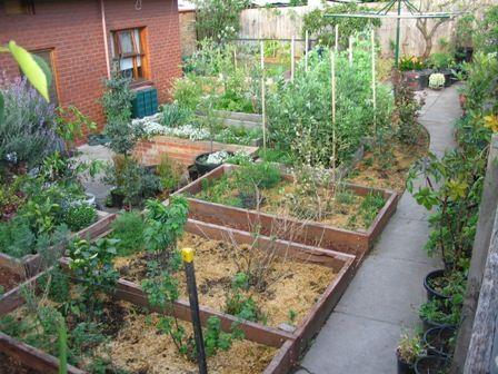 Permaculture garden beds