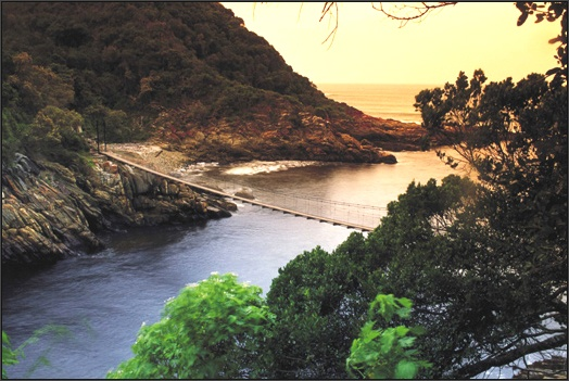 Reasons to stay in the Garden Route  The Garden Route runs along the Western Cape coast from Cape Town to Port Elizabeth and is so called because of its abundant plant life. Grootbos Nature Reserve alone has over 750 species of Fynbos. The Garden Route is sandwiched between the the Outeniqua and Tsitsikamma Mountains and the Indian Ocean. The Outeniqua and Tsitsikamma indigenous forests offer hiking trails and numerous eco-tourism activities.