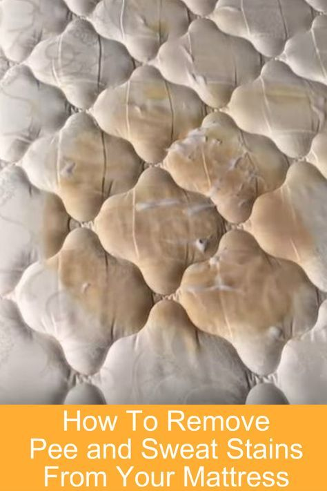 7645e27642c1f077233d2e52f1e6709b DIY Instructions to remove Pee and Sweat Stains from your mattress. Only 3 ingre...