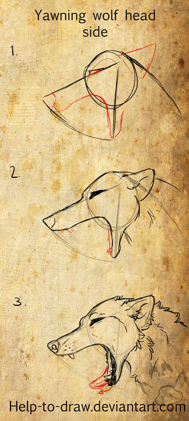 Yawing Wolf Tutorial Side by CasArts