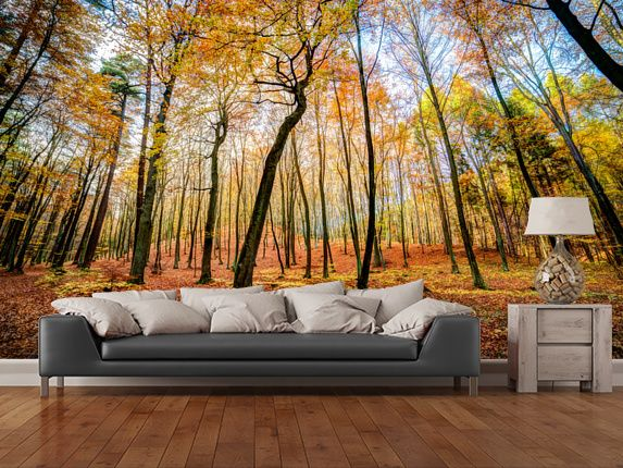 105 best forest wall murals images on pinterest murals for Autumn tree mural