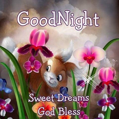 Goodnight, Sweet Dreams, God Bless good night good night