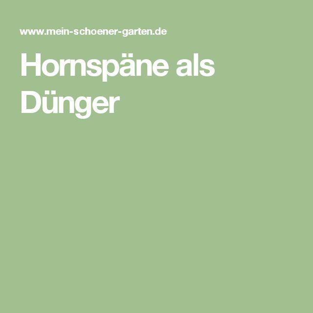 Beautiful Hornsp ne als D nger