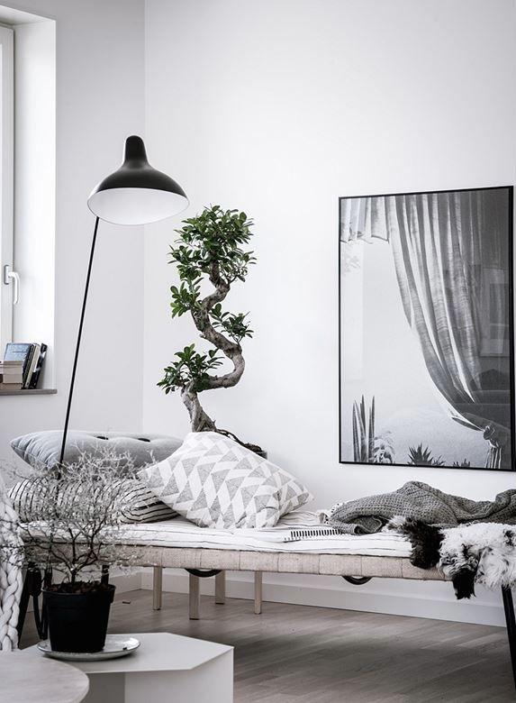 daybed, cozy nook