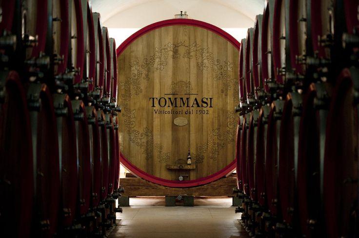 Tommasi Magnifica Oak Cask - Biggest world cask Guiness World Record #GWR #wine www.tommasi.com