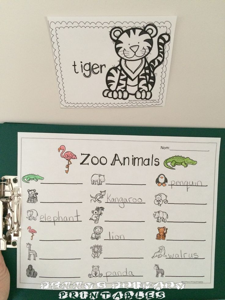 {free} Going to the Zoo Writing Activities