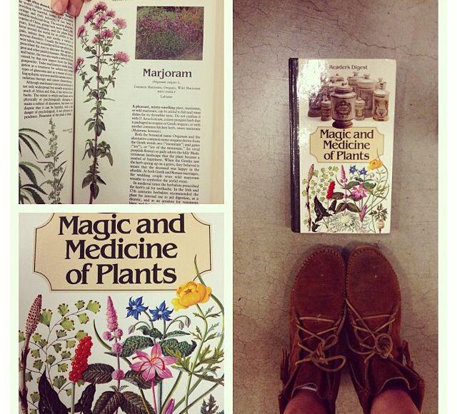 Medicine, magic and morality (press