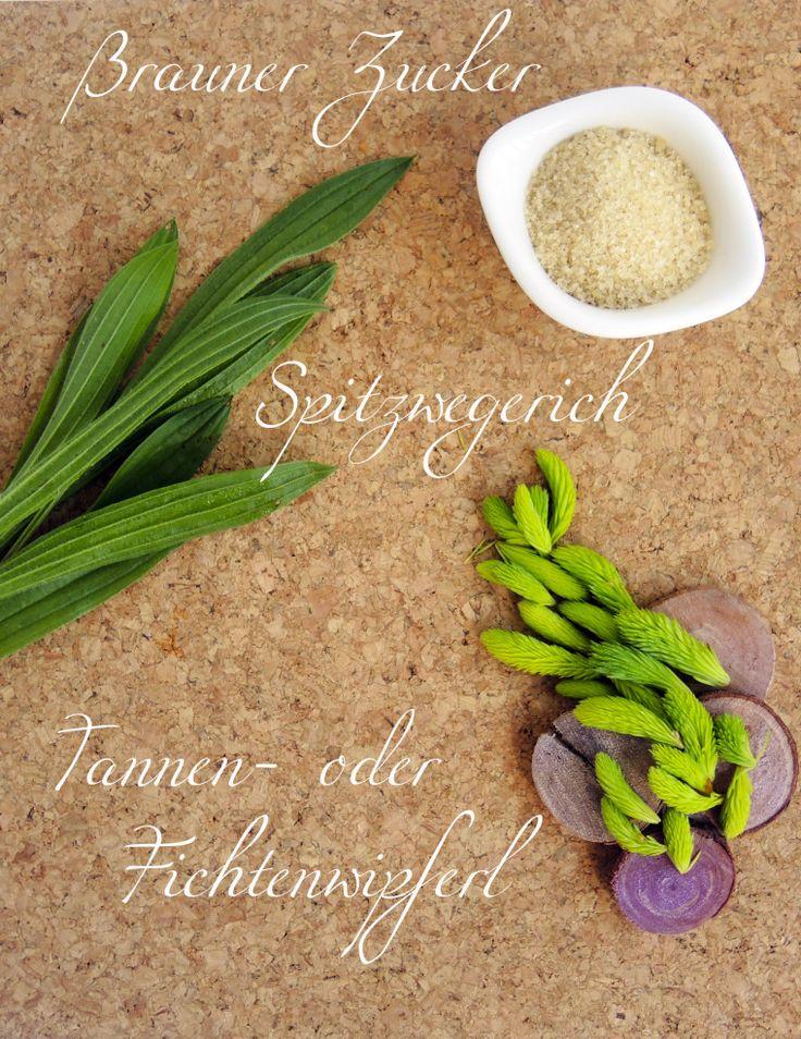 Zutaten_Maiwipferlsirup www.fräuleingrün.at