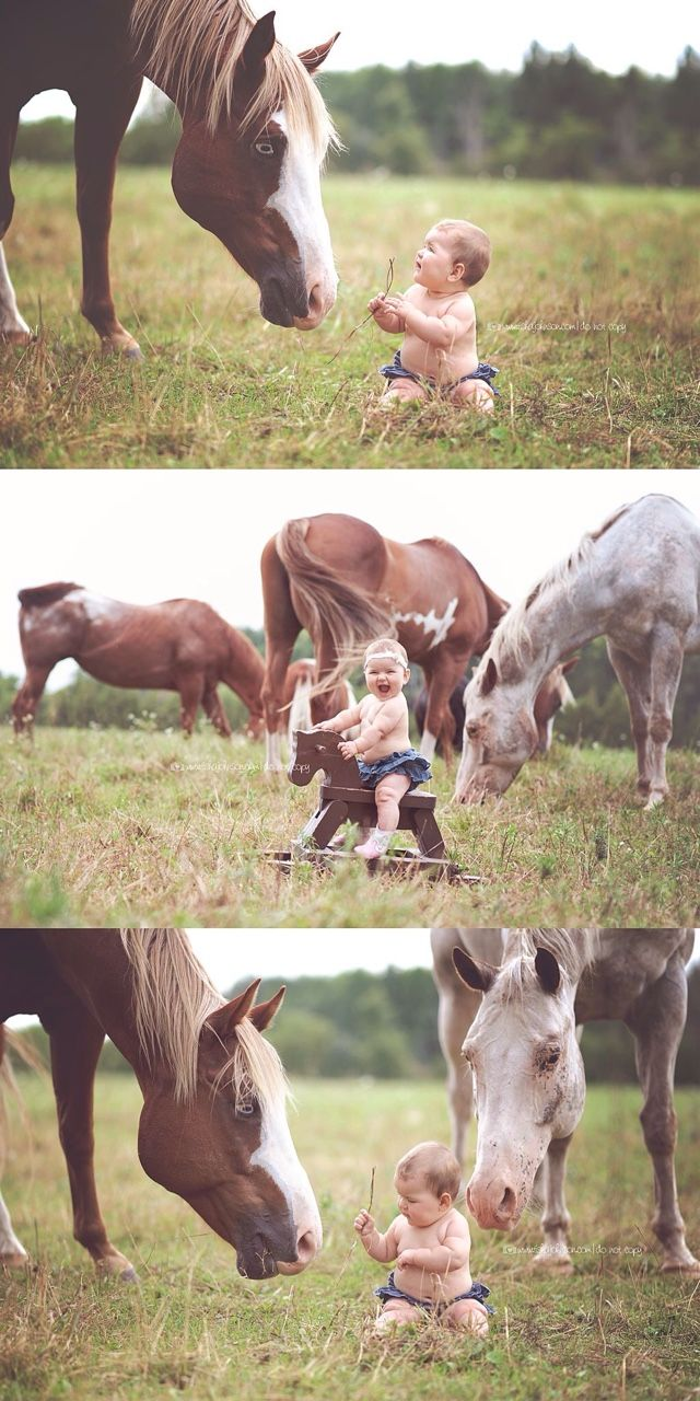 acountrygirlblog:   How adorable is this??? - The Definition of Love.... is Horses