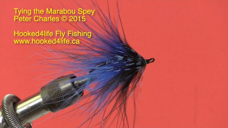 Beginner's Fly Tying Series - the Marabou Spey