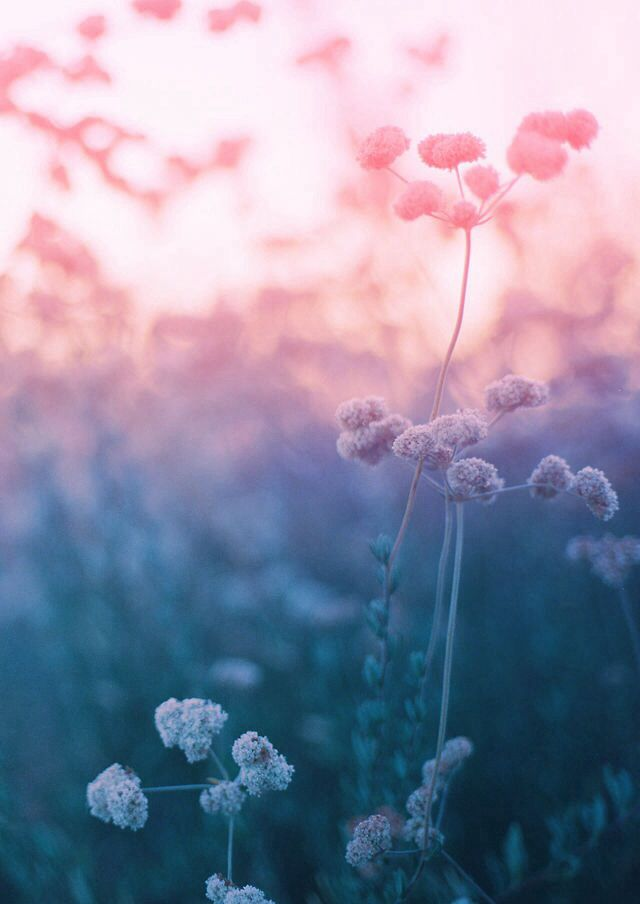 Dreamy Girl Wallpapers 13 Best Dreamy Backgrounds Images On Pinterest