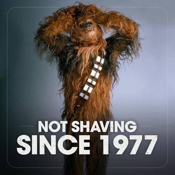 Chewbacca Not Shaving Since 1977 #StayStrong Beardoholic.com