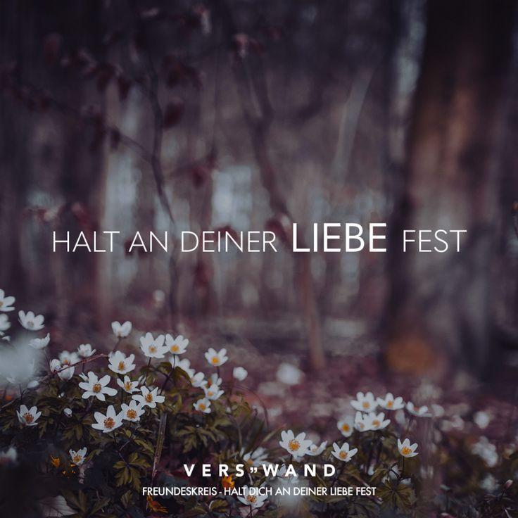 Halt An Deiner Liebe Fest Freundeskreis Deiner Fest Freundeskreis Halt Liebe Kurze Spruche Liebe Lied Zitate Trauer Zitate