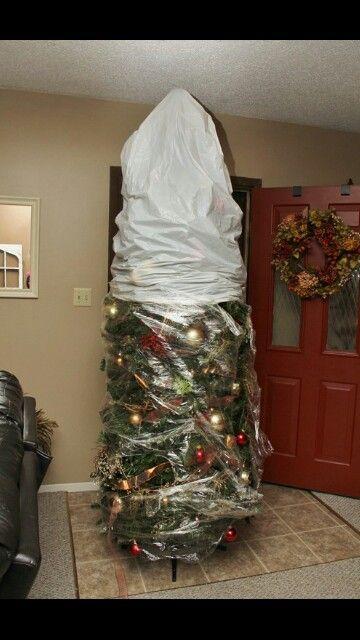 saran wrapped christmas tree - Christmas Tree Storage