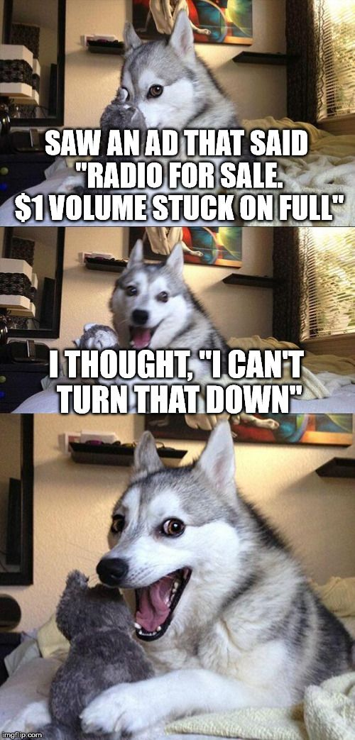 "Bad Pun Dog | SAW AN AD THAT SAID ""RADIO FOR SALE. $1 VOLUME STUCK ON FULL"" I THOUGHT, ""I CAN'T TURN THAT DOWN"" 