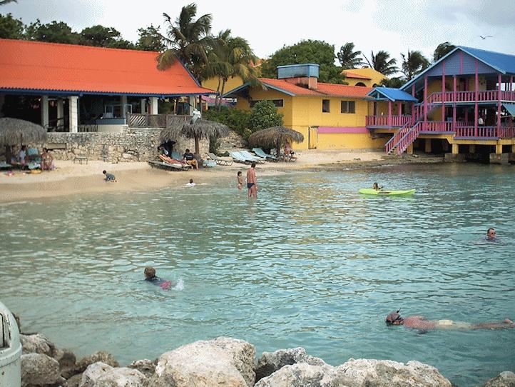 17 best images about bonaire on pinterest license plates caribbean and islands - Dive e divi ...