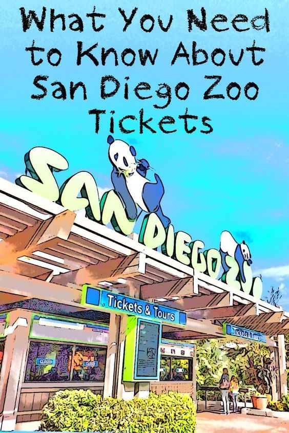 Don't let all the San Diego Zoo ticket options confuse you. This concise guide sorts them all out.