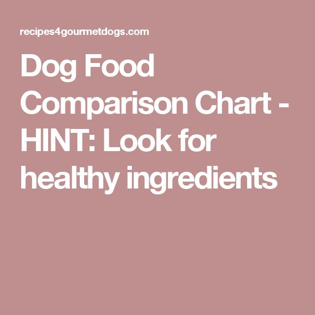 Best High Protein Supermarket Dry Cat Food